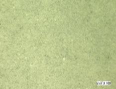 Zinc oxide powder + Gel (Semisolid)