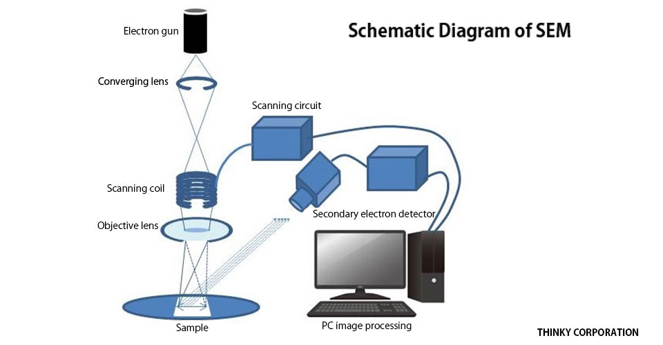 schematic diagram of SEM