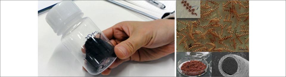 Hundreds of millions of spirulina metal microcoils