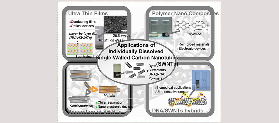 """*The figure shows the world of """"soluble carbon nanotubes"""""""