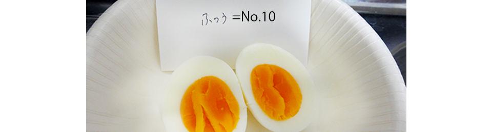 Egg No.10