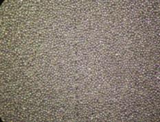 Lithium nickel oxide (LiNiO2)